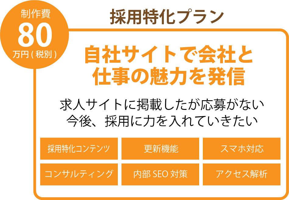 80万円使用特化プラン